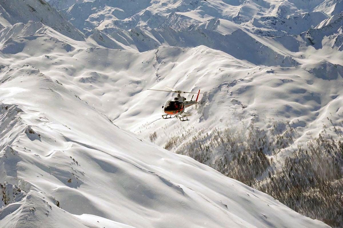 Pure ski company heliskiing susa valley
