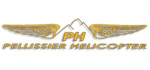 http://www.pureski-company.com/wp-content/uploads/2015/08/Pellissier.jpg